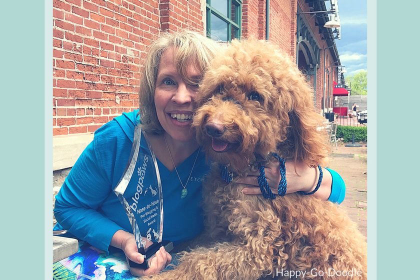 Red goldendoodle dog and her pet parent pose for a picture with their BlogPaws trophy for best new pet blog