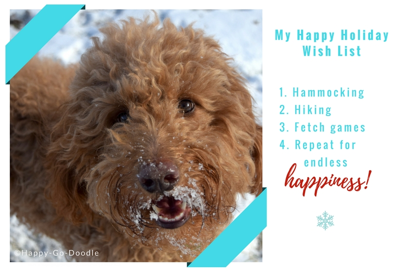 Red goldendoodle dog with a Christmas Wish List of gift ideas for dog owners that includes hammocking, hiking, fetch, and happiness
