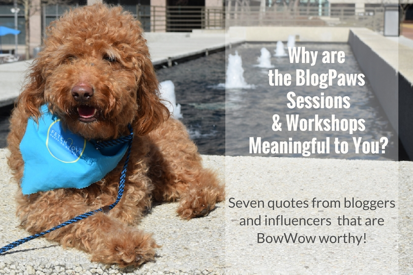 Why are the BlogPaws Conferenece Sessions meaningful? Seven quotes from bloggers and influencers