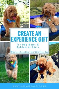 Four images of red goldendoodle dog outdoors and title create an experience gift for dog moms and outdoorsy girls who love spending time with their dog