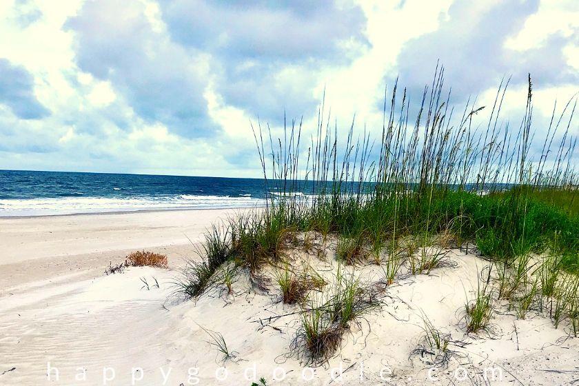 Ocean and shoreline of Amelia Island
