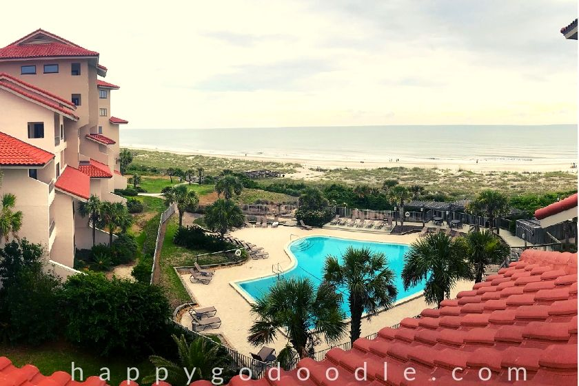 photo of the view from omni amelia island villa a dog-friendly resort
