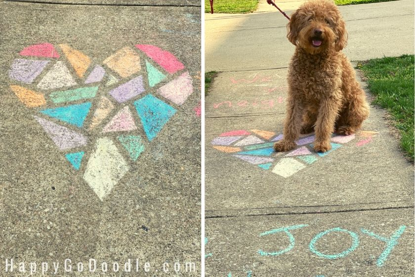 sidewalk chalk heart that looks like stained galss and red goldendoodle dog sitting on sidewalk with word joy. photo.