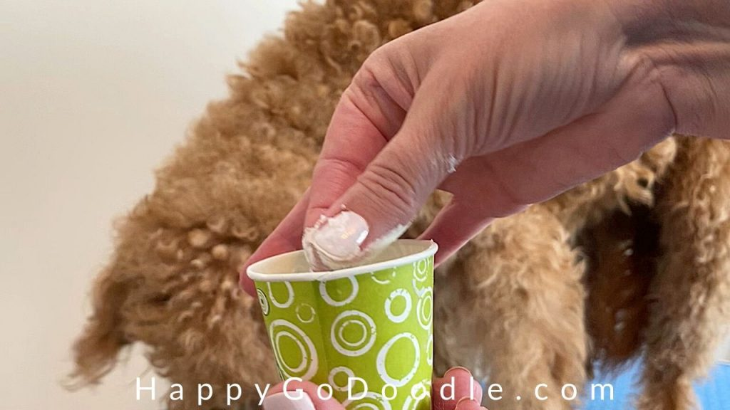 hand holding paper cup and cornstarch with goldendoodle dog in background, photo