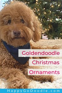 Fluffy Goldendoodle dog by Christmas tree and title: Goldendoodle Christmas Ornaments, photo