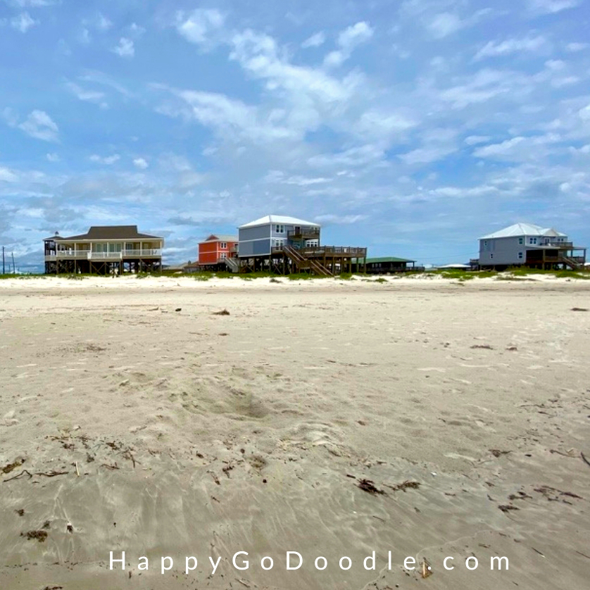 Several beach houses just steps away from the Gulf on Dauphin Island, photo