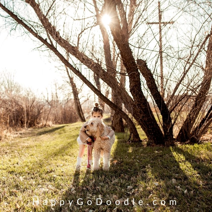 Cute scene of Goldendoodle and child outside in sun, photo
